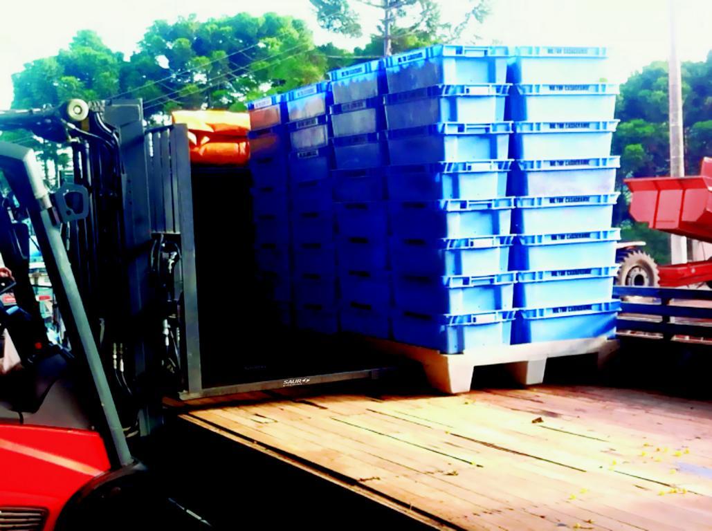 Garfos Telescópicos SAUR agilizam movimentação de caixas de uvas